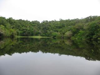Integrative And Dynamic Natural Resources Management Brazil - Natural resources of brazil