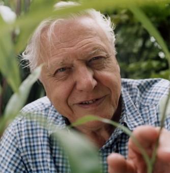 Image for 'Sir David Attenborough, WFN Trustee