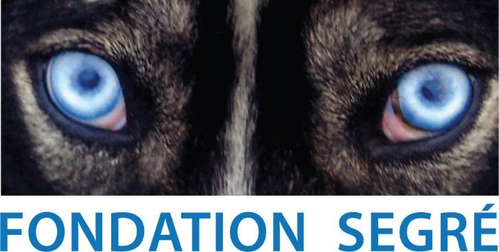 Image for Fondation Segre